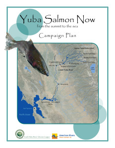Yuba Salmon Now Campaign Plan front page