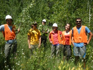 Volunteers in aspen stand in Loney Meadow during our last workday.