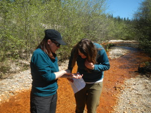 Sarah Yarnell investigating a juvenile frog with AmeriCorps River Monitoring Coordinator Marianne Pott.