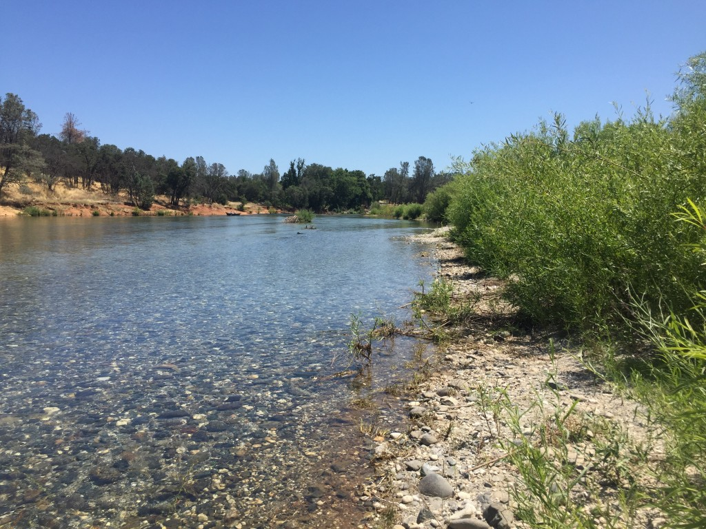 lower-yuba-river-at-hammon-bar